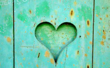 Kalp sağlığı için neden sızma zeytinyağı tüketmeliyiz? Natürel sızma zeytinyağı kalbi korur.