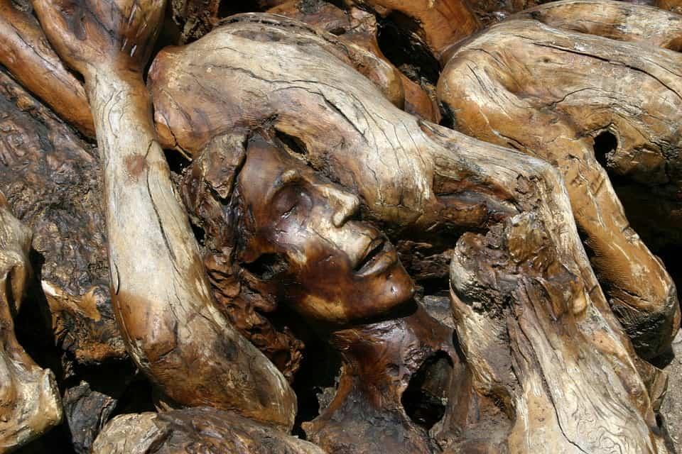 zeytin ağacı tarih boyunca esin kaynağı olmuştur.