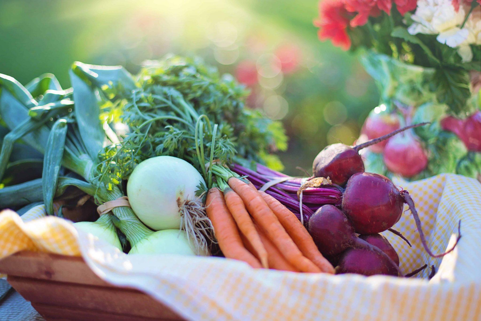 Akdeniz diyeti, sağlıklı yaşam, sağlıklı beslenme, doğal beslenme